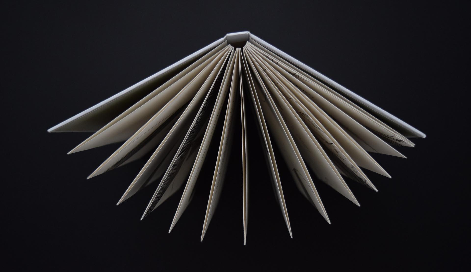 Libro de tapa dura o libro de tapa blanda